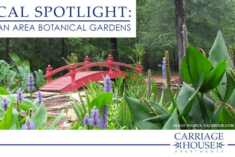 Local Spotlight: Dothan Area Botanical Gardens