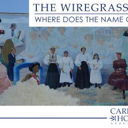 the Wiregrass Region