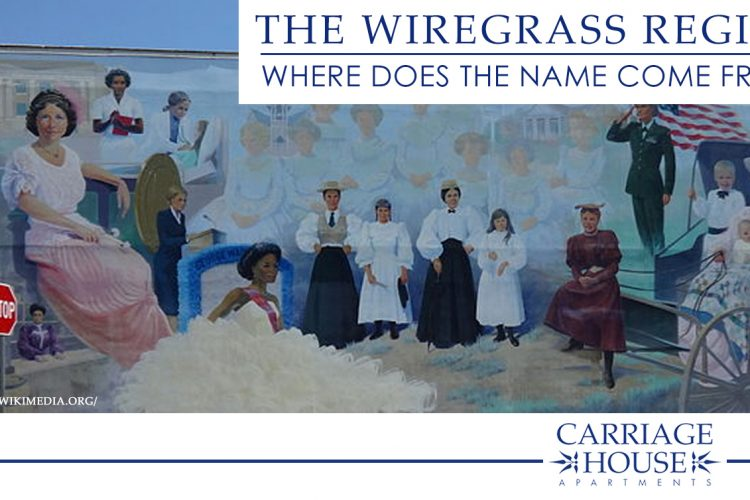 The Wiregrass Region: Where Does the Name Come From?