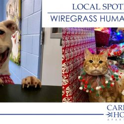 Wiregrass Humane Society