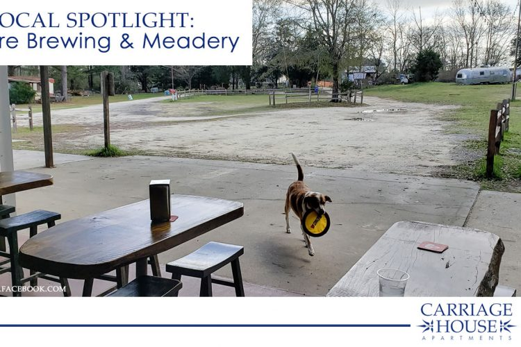 Local Spotlight: Folklore Brewing and Meadery