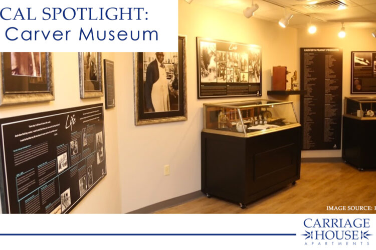 Local Spotlight: The Carver Museum